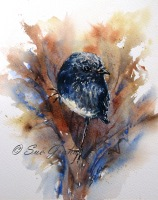 Watercolour by Sue Graham